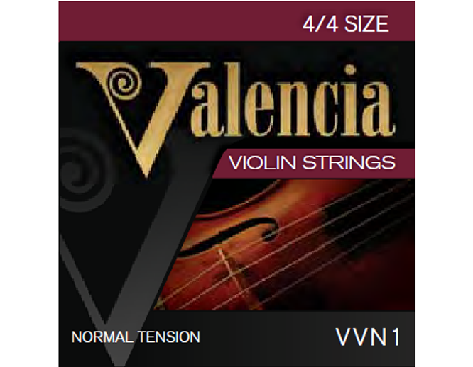 Valencia Violin Strings Set