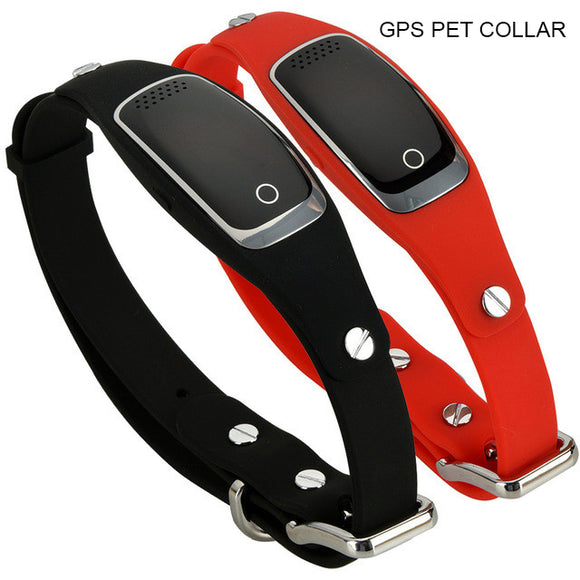 GPS dog collar Bachelor Barn