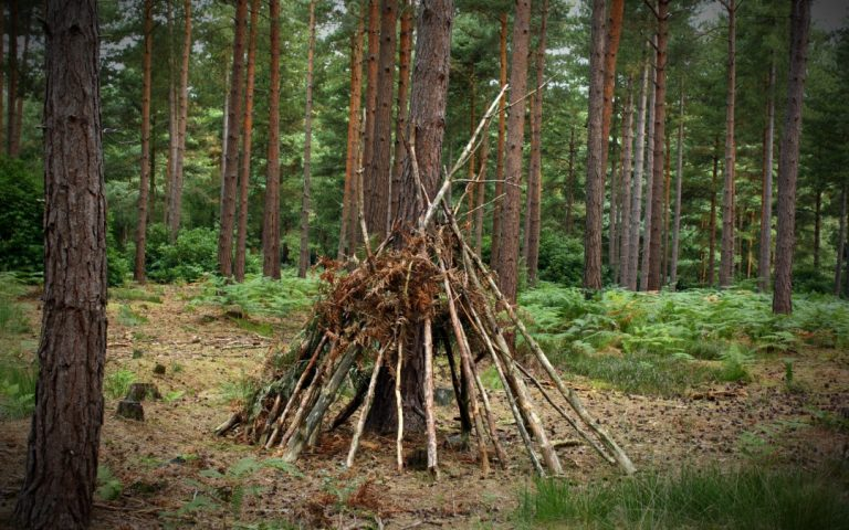 Survival Skills – Practice Makes Perfect