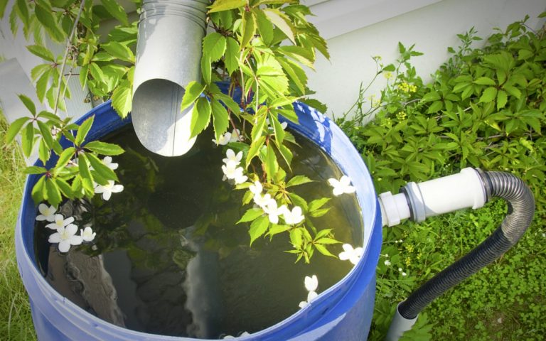 Rainwater Collection, One of Your Best Sources of Water