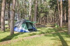 dome-tent-camping-in-forest-300x200