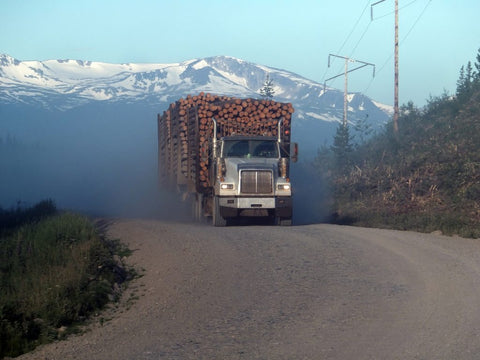 logging-truck-on-forestry-road-1024x768