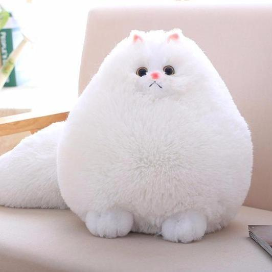 Persian fat cat plush toy cameow for Fluffy cat toy