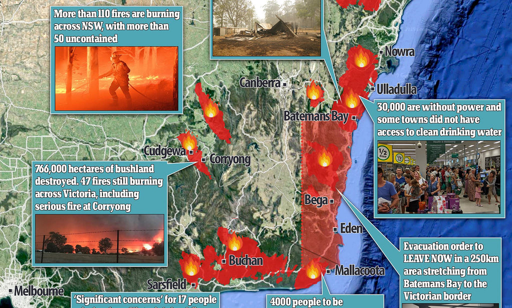 Our Undeniable Guide to Comprehending the Fires.