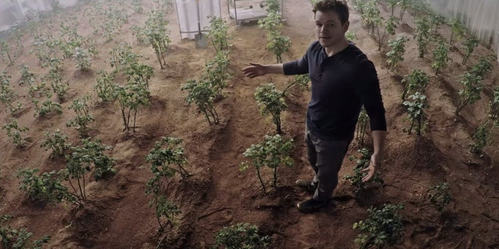 Extra Terrestrial Veggies Sucessfully Grown in Mars-esque Soil!