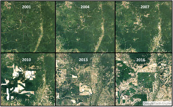 Deforestation before and after via Google Earth