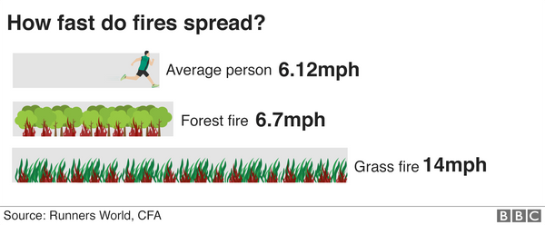 Bushfires can spread three times faster than the average adult can run.