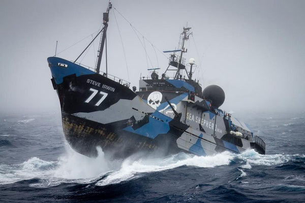 Sea Shepherd will look to be creating a spacecraft to dissuade the illegal and immoral destruction of asteroids.