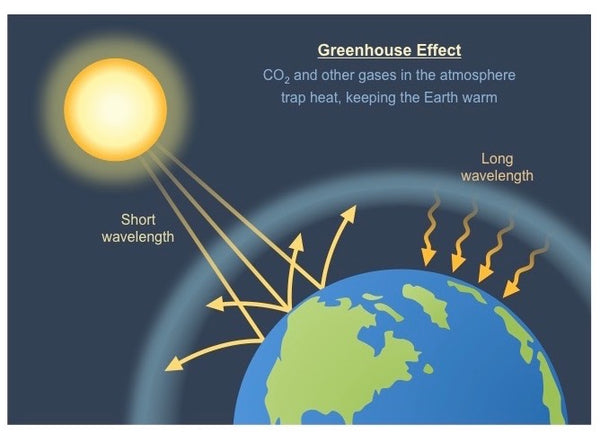 The greenhouse effect that carbon dioxide emissions has created.
