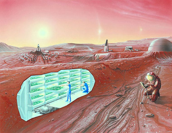 A colony on Mars can begin from a hole that can provide protection from the harsh environment