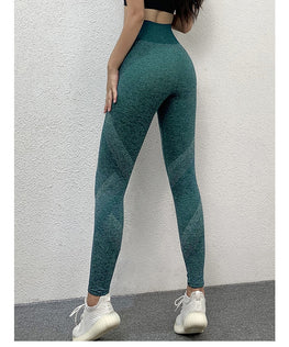 Vital Seamless Fitness Leggings Leggings - Arhametics