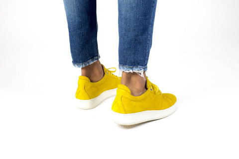 Bridge Katchas Low Top