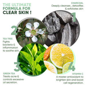 Detox Charcoal Face Wash for Anti Acne, Pollution & Oil Control with Vitamin C & Tea Tree - Greenberry Organics