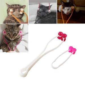 Roulettes de massage pour chat - Le chat Mallow