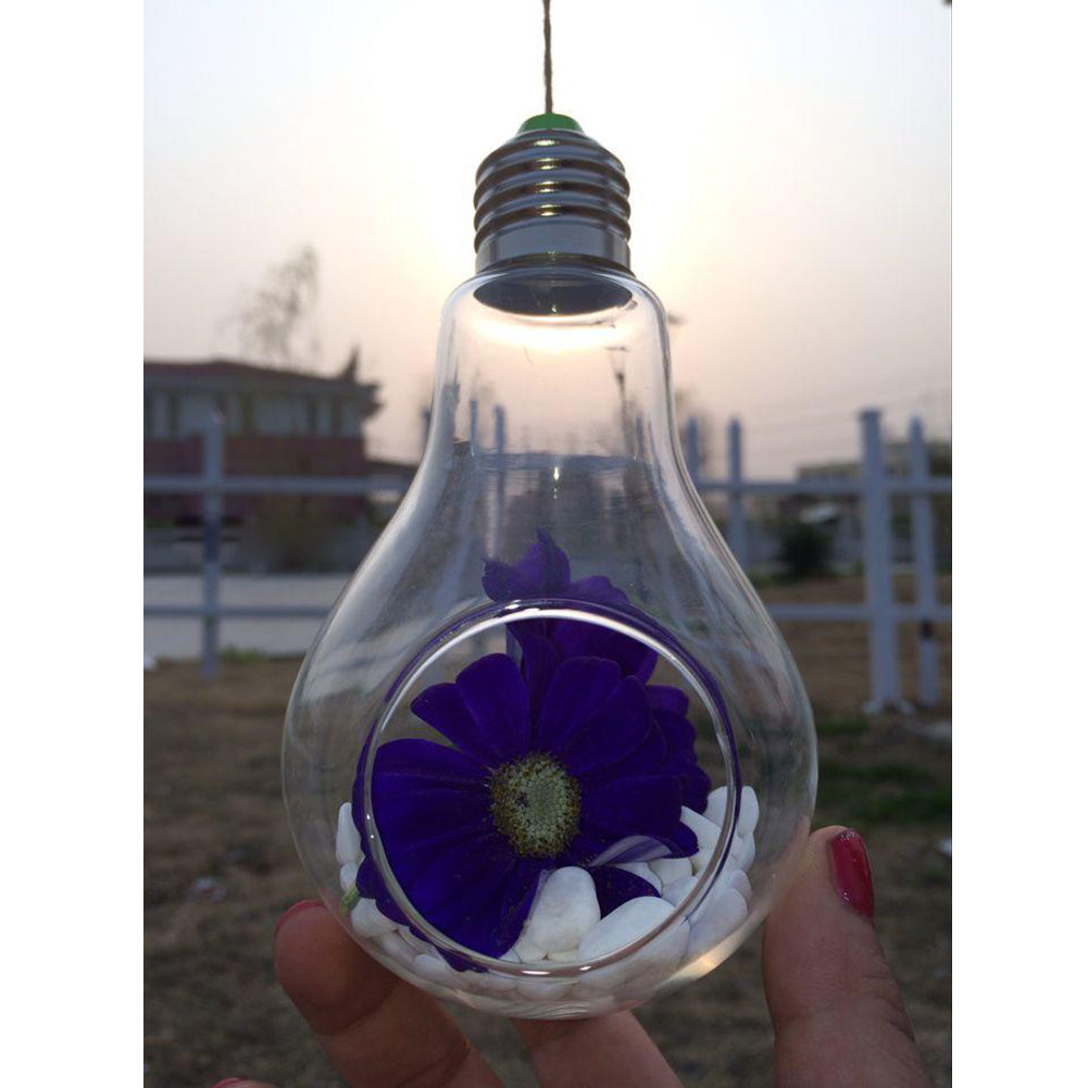 New Glass Bulb Lamp Shape Flower Water Plant Hanging Vase Hydroponic Container Pot