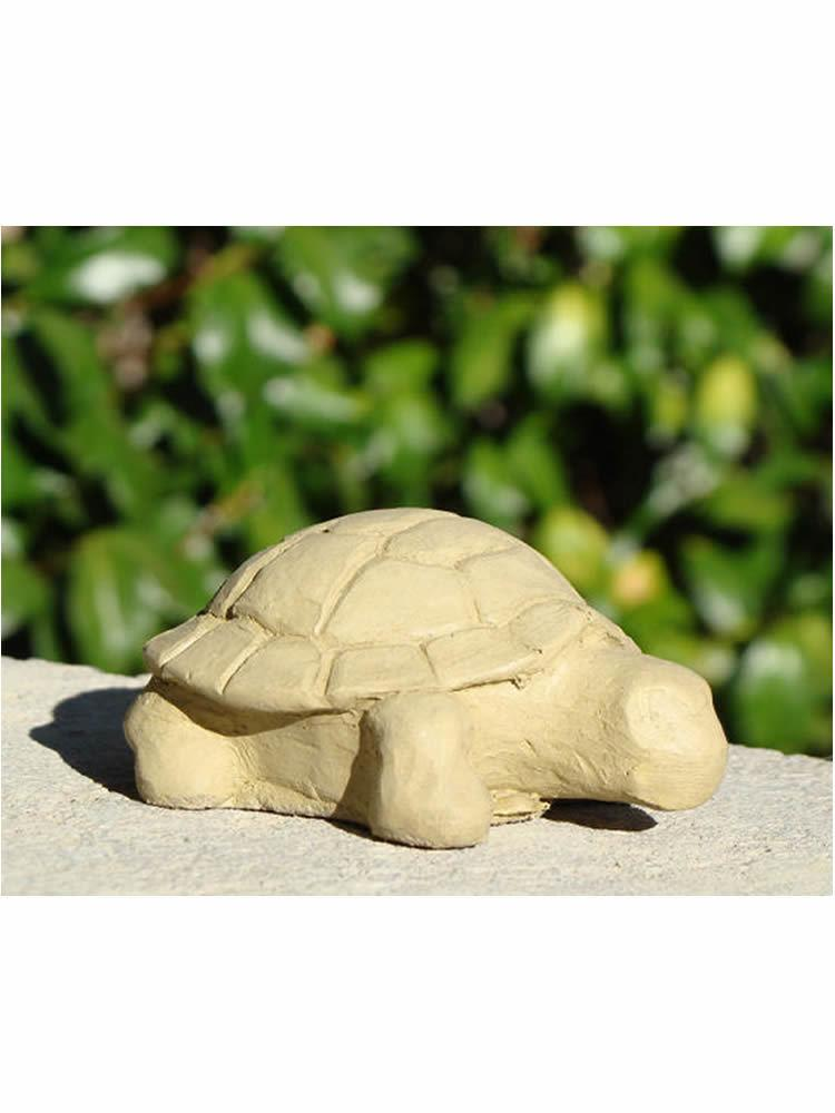 Mini Desert Turtle