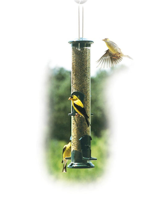 Thistle Tube Bird Feeder