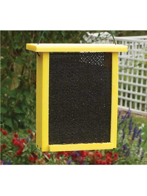 Yellow Finch Mesh Box - Going Green