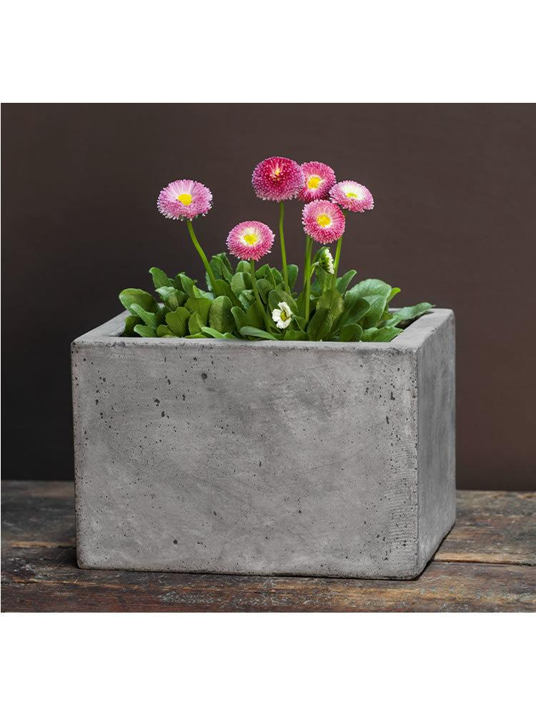 Small Geo Planter Set of Four