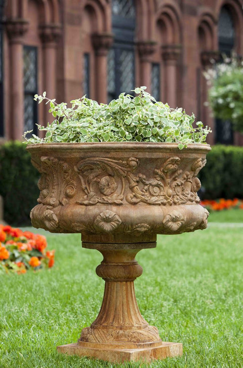 Set of 2 Smithsonian Morning Glory Urns with free plants