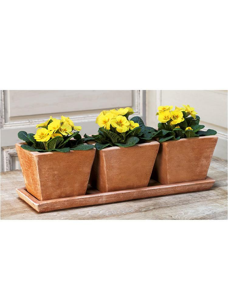 Tres Pequenos Planter Set of Three in Terra Nova
