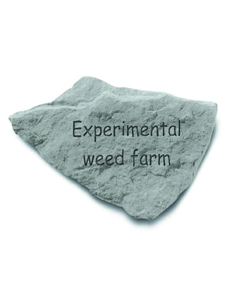Experimental Weed Farm Garden Accent Rock