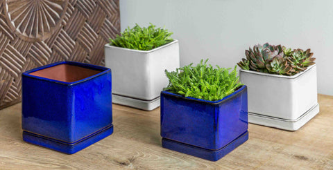 I/O Cube Low Planter - Set of 6 in Riviera Blue