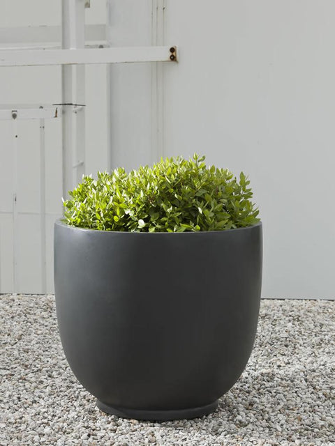 Danilo Planter in Matte Black Lite