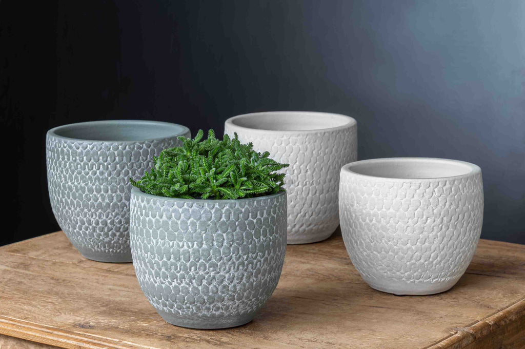 Scalloped Short Round Planter - Set of 8 in Grey and Egghsell Mix