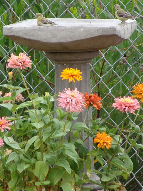 Old World Octagon Birdbath
