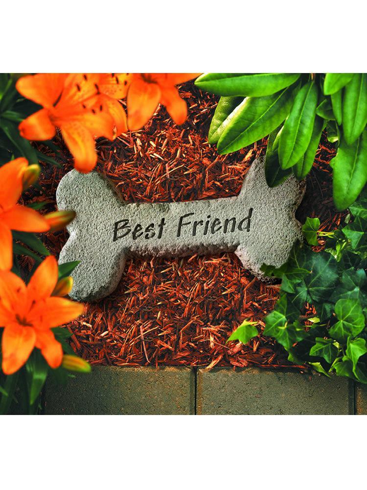 Best Friend Bone Garden Accent Rock