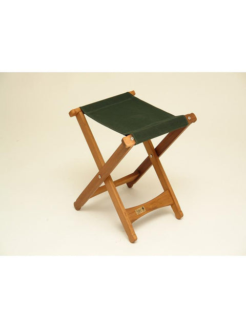 Pangean Folding Stool Green