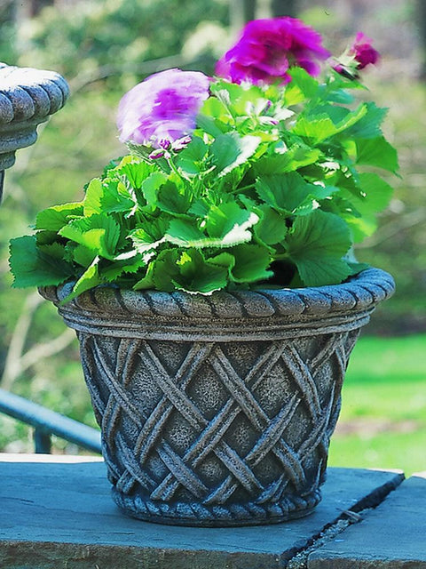 English Weave Planter, Small