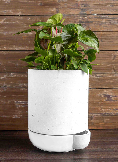 The Simple Pot - 3 Gallon