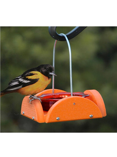 Going Green Oriole Feeder Orange