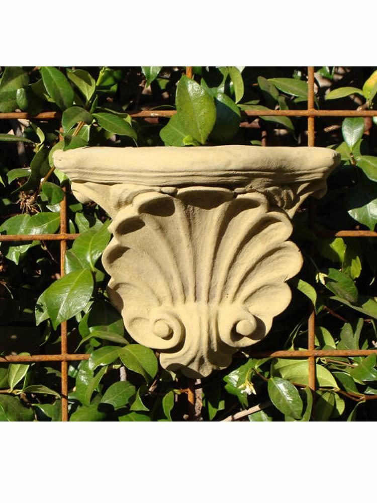 Seashell Sconce (Pair)