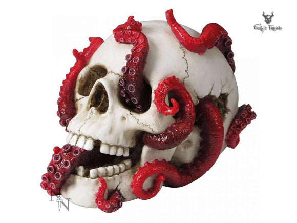 Devoured 24.5cm White Skull with Tentacles Coming from its Eye Sockets - Gothic Fantasy Store