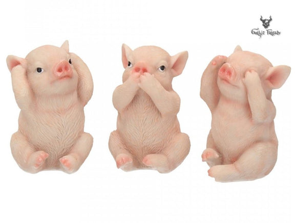 Three Cute Pigs covering Ears Mouth and Eyes