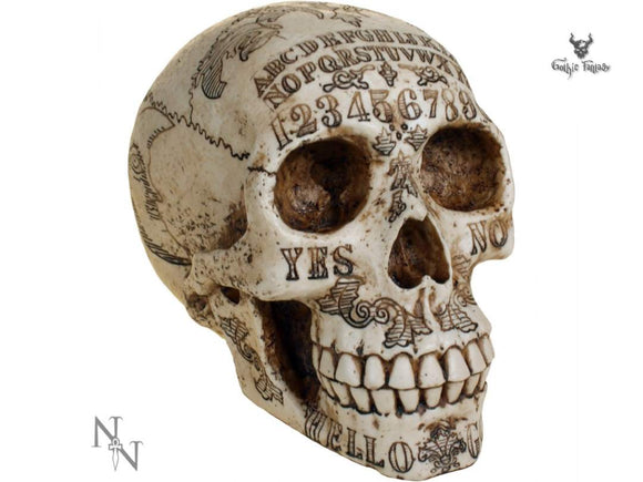 Spirits Skull Head 20cm Skull with Spirit Board Markings Detailed Over It - Gothic Fantasy Store