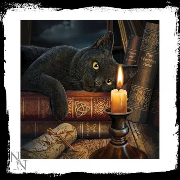 Light Up Cushion Witching Hour (LP) - Gothic Fantasy Store