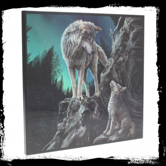 Guidance SmNemesis Now Crystal Clear Picture (LP) 25cm - Gothic Fantasy Store