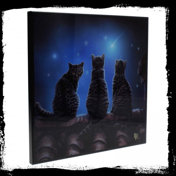 Wish Upon a Star SmNemesis Now Crystal Clear Picture 25cm - Gothic Fantasy Store
