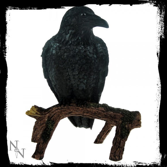 Quoth The Raven, Nevermore 16cm - Gothic Fantasy Store