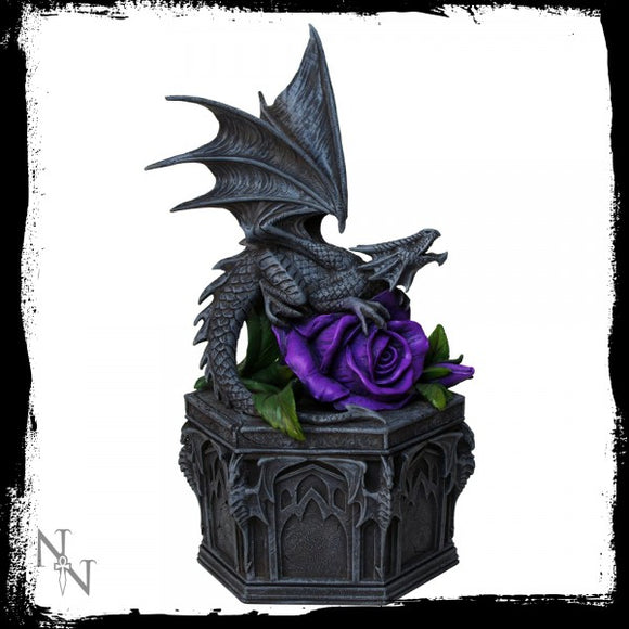 Dragon Beauty Box (AS) 25cm - Gothic Fantasy Store