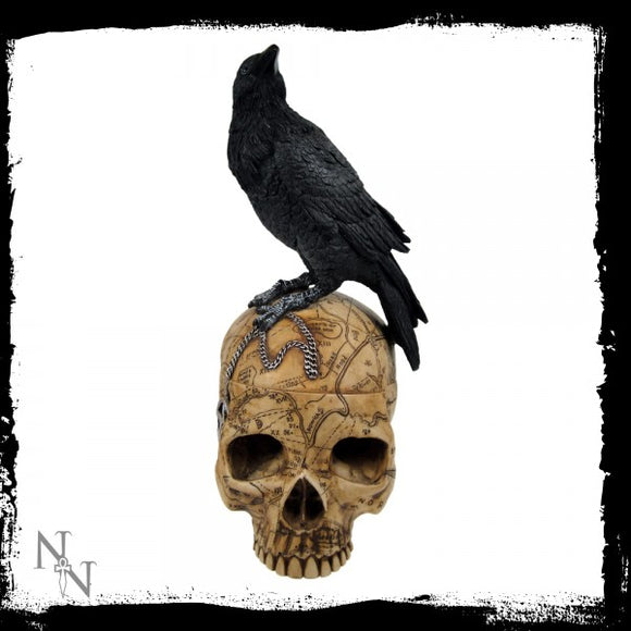 Salems Familiar 27cm - Gothic Fantasy Store