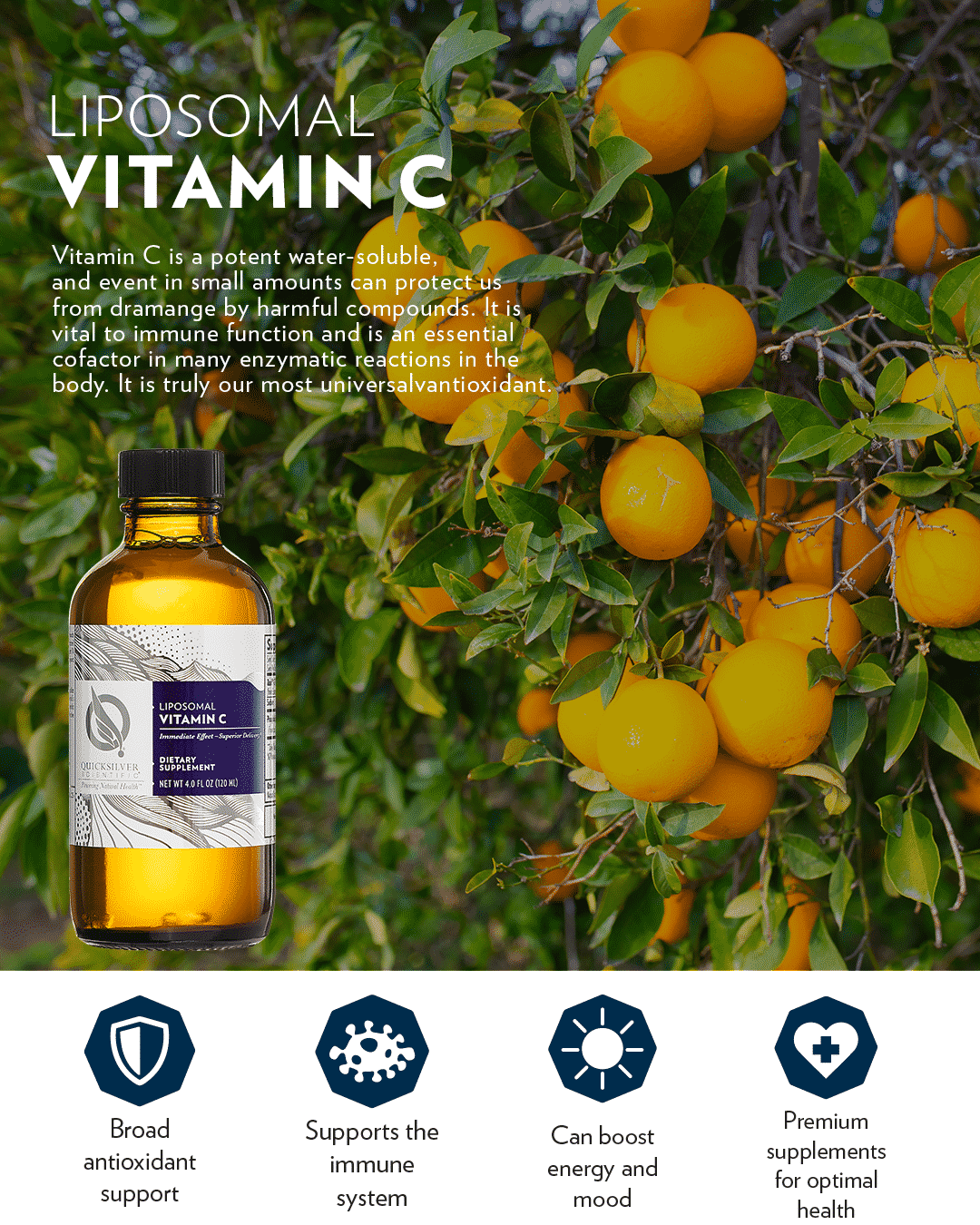 QUICKSILVER SCIENTIFIC - VITAMIN C - LIPOSOMAL (120ML)