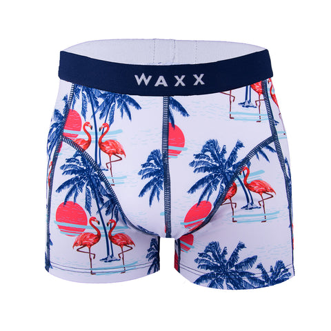 Waxx Men's Trunk Boxer Short Palm Tree
