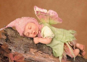 **ANNE GEDDES LIFESTYLE BRAND  (Photography Hall of Fame Recipient)