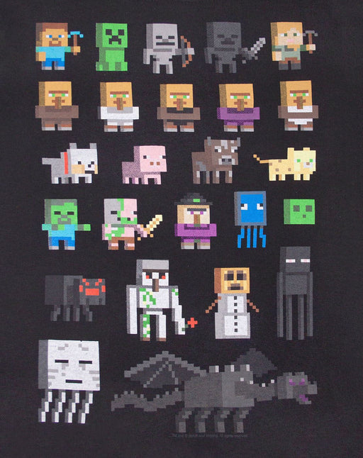 Minecraft Sprites Boy's Black T-Shirt