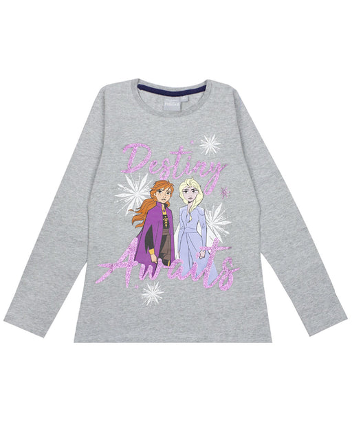 "Disney Frozen 2 Elsa & Anna ""Destiny Awaits"" Girls Novelty Character Top"